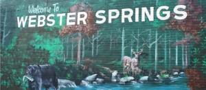 thumb_Welcome to mural webstersprings_1024